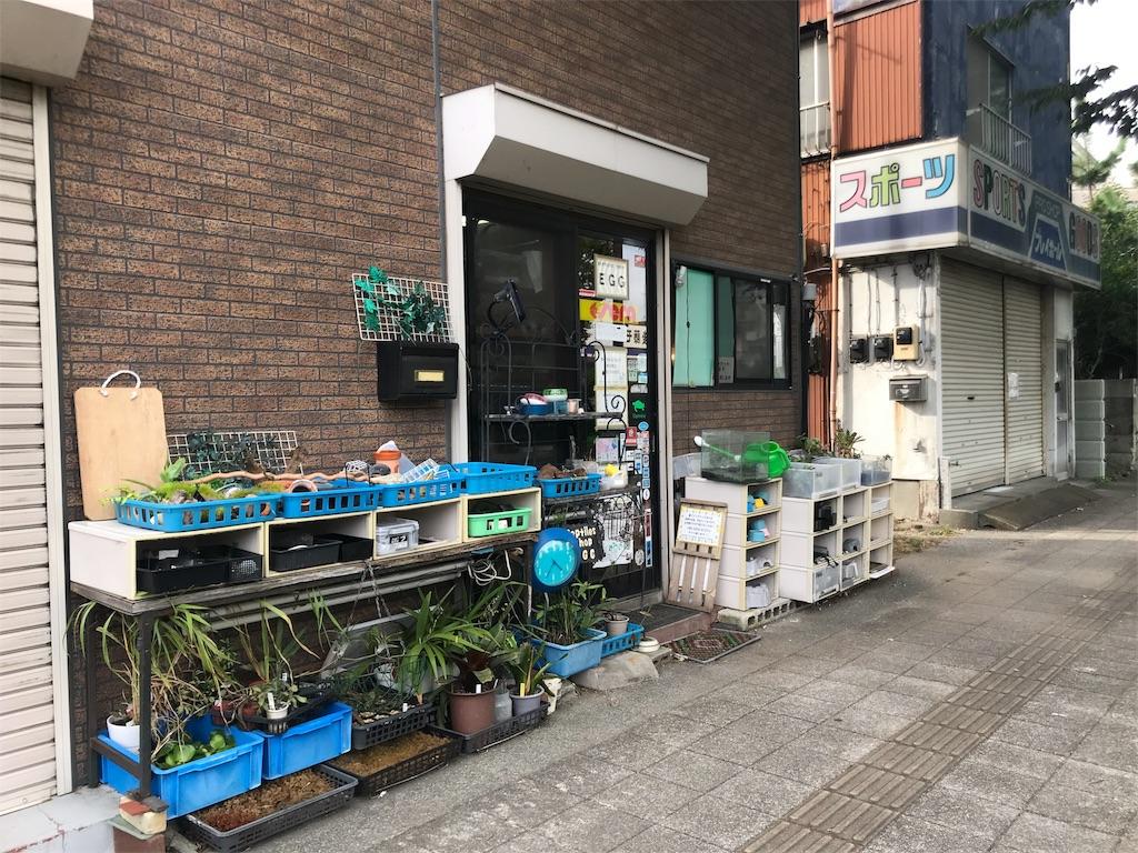 f:id:shimauma2692:20180826194921j:image