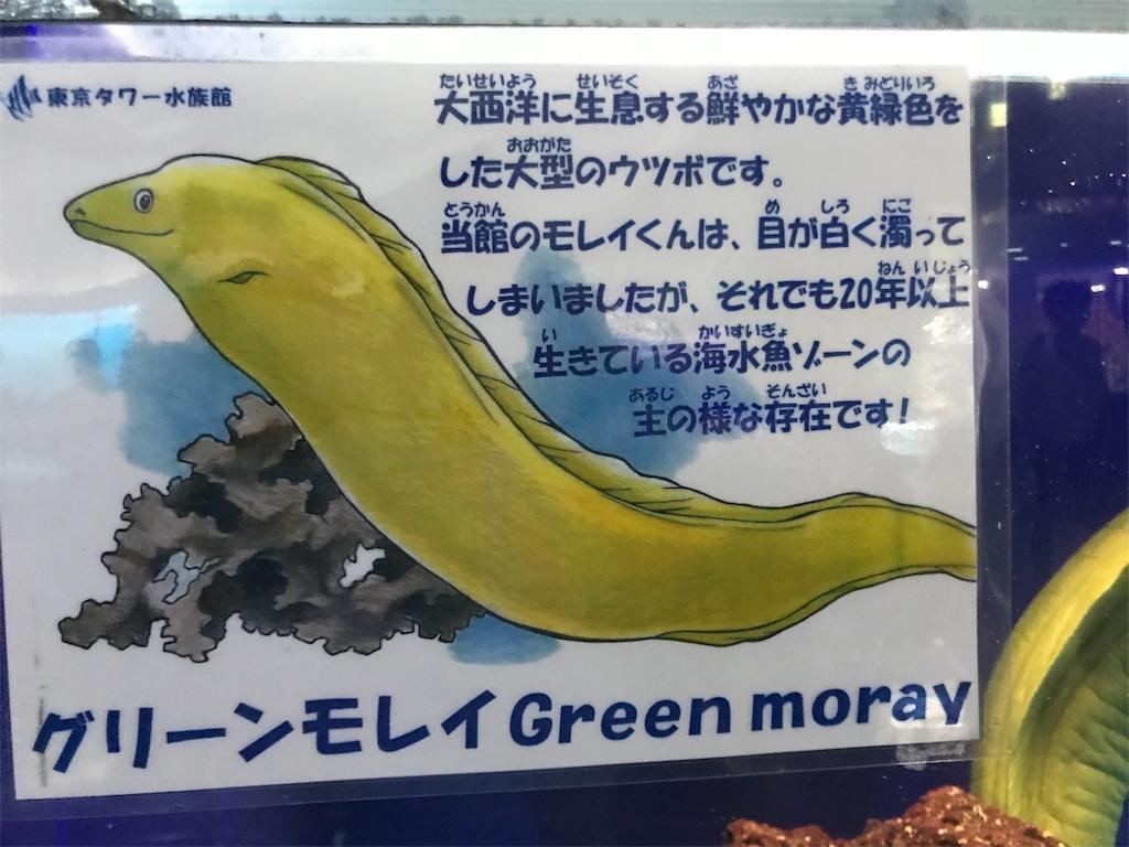 f:id:shimauma2692:20180902203039j:image