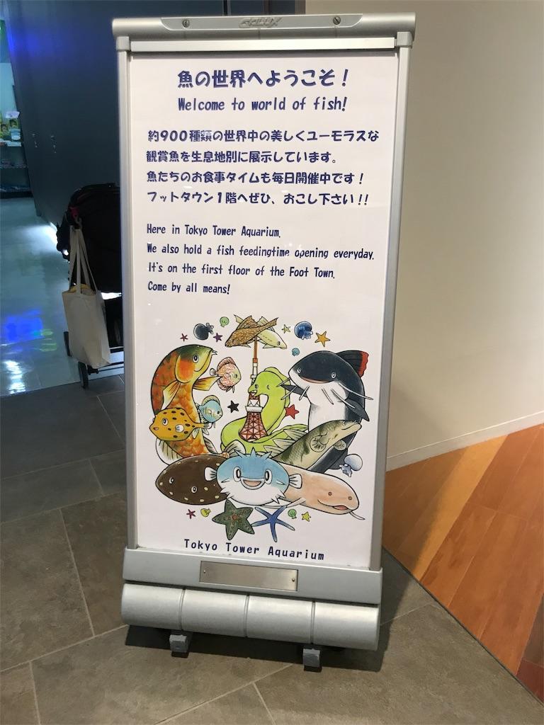 f:id:shimauma2692:20180902212630j:image