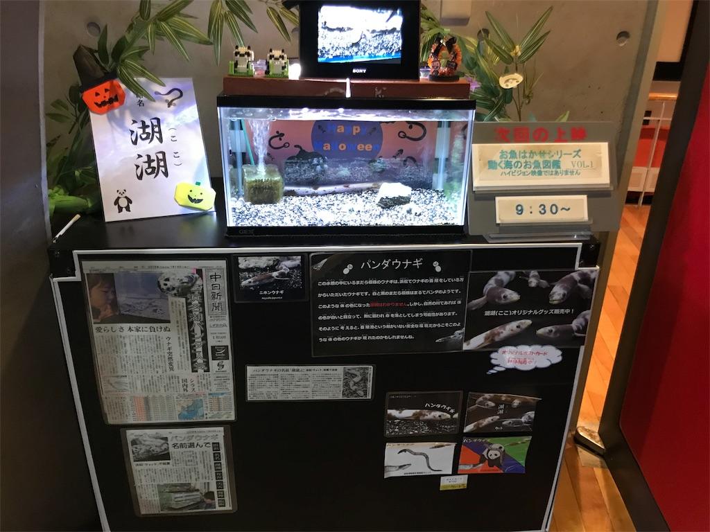 f:id:shimauma2692:20180930221208j:image