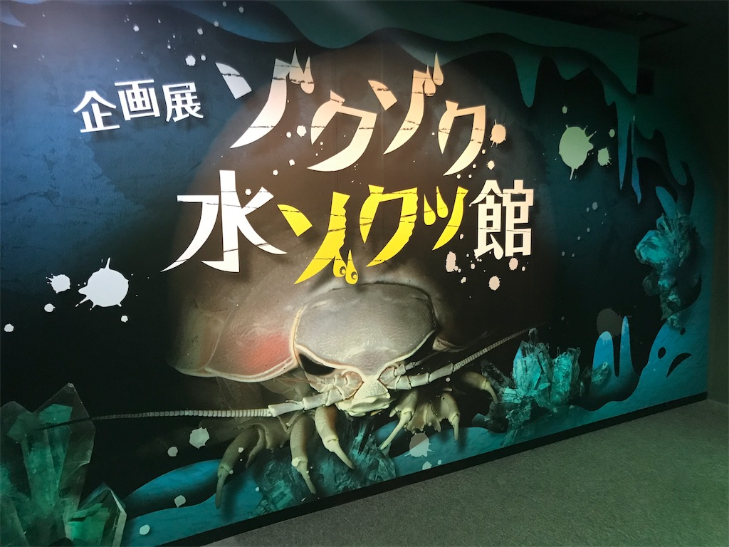 f:id:shimauma2692:20181216210522j:image