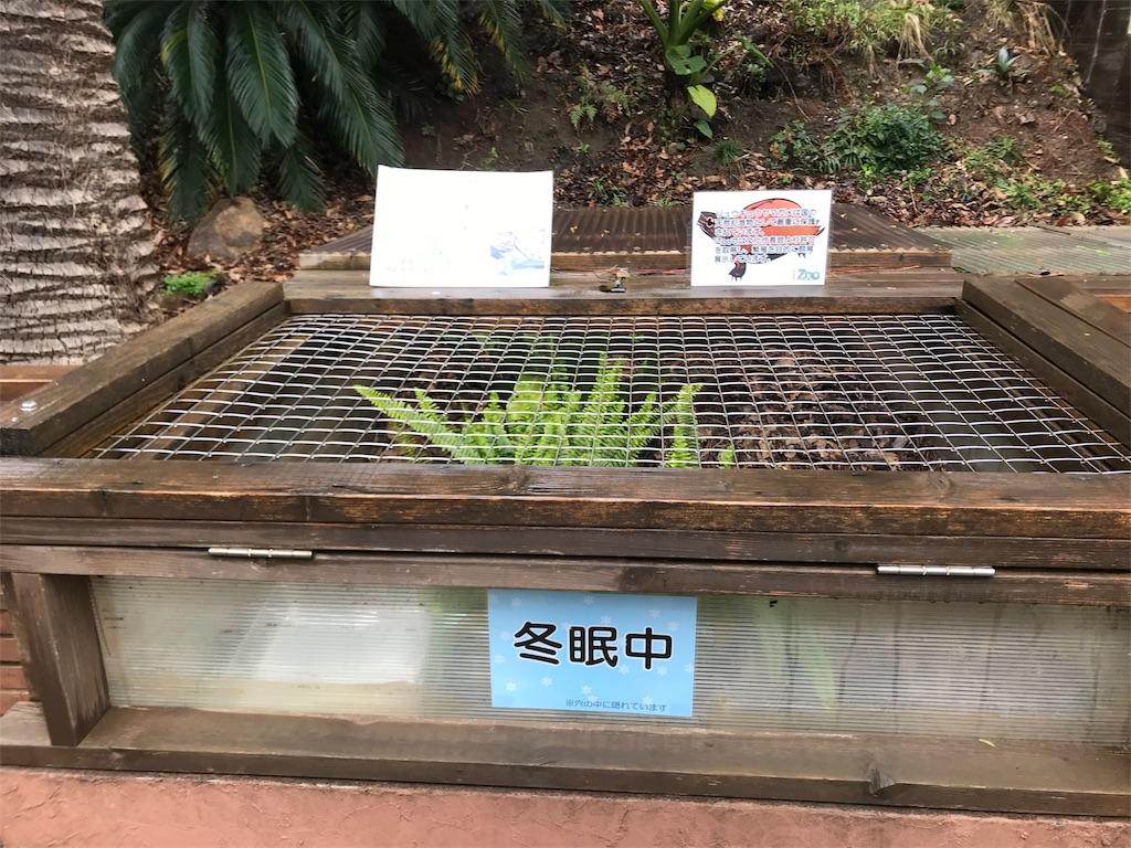 f:id:shimauma2692:20190321160008j:image