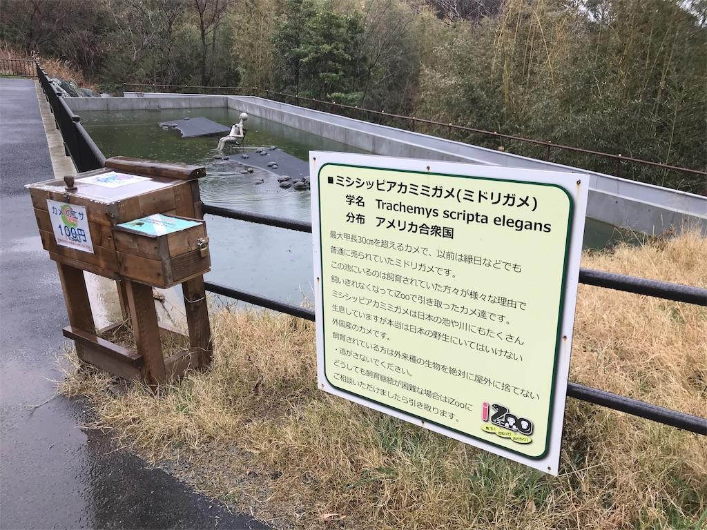 f:id:shimauma2692:20190321160121j:image
