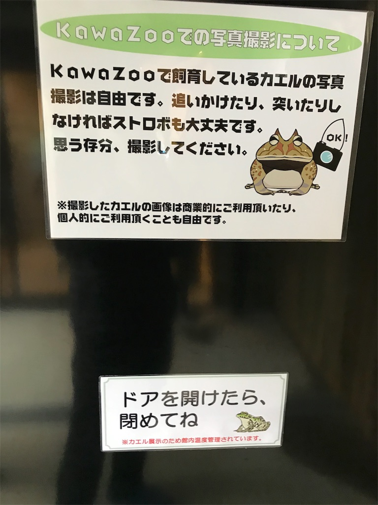 f:id:shimauma2692:20190412173724j:image