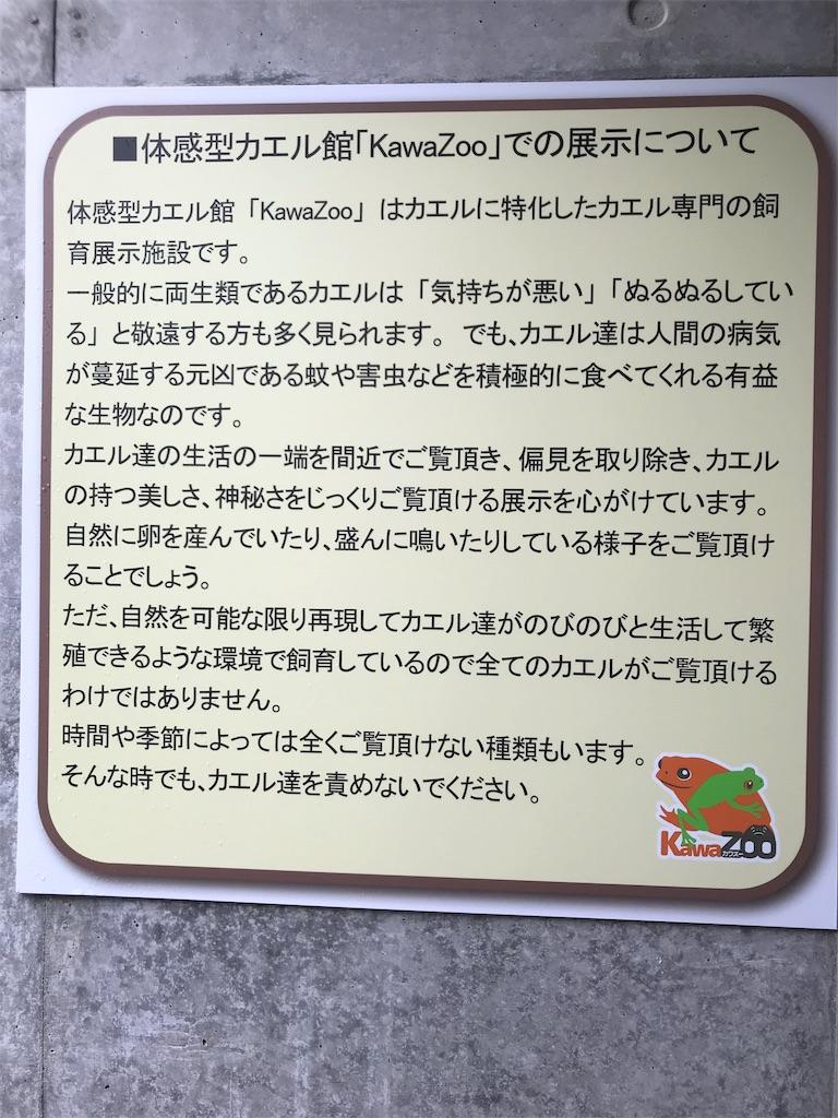 f:id:shimauma2692:20190412180547j:image