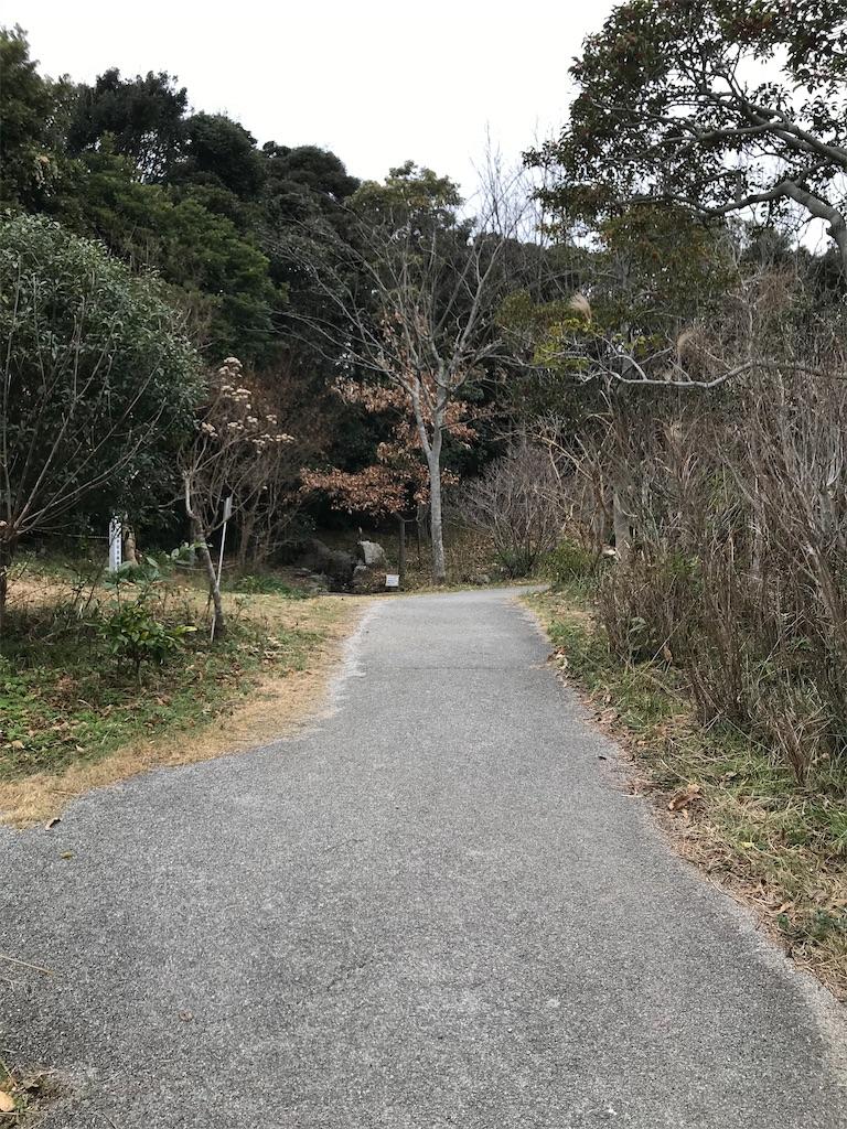 f:id:shimauma2692:20200112185729j:image