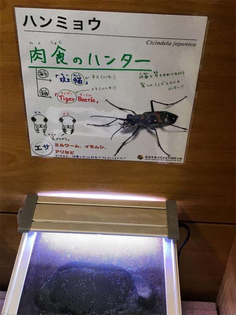f:id:shimauma2692:20200112185746j:image