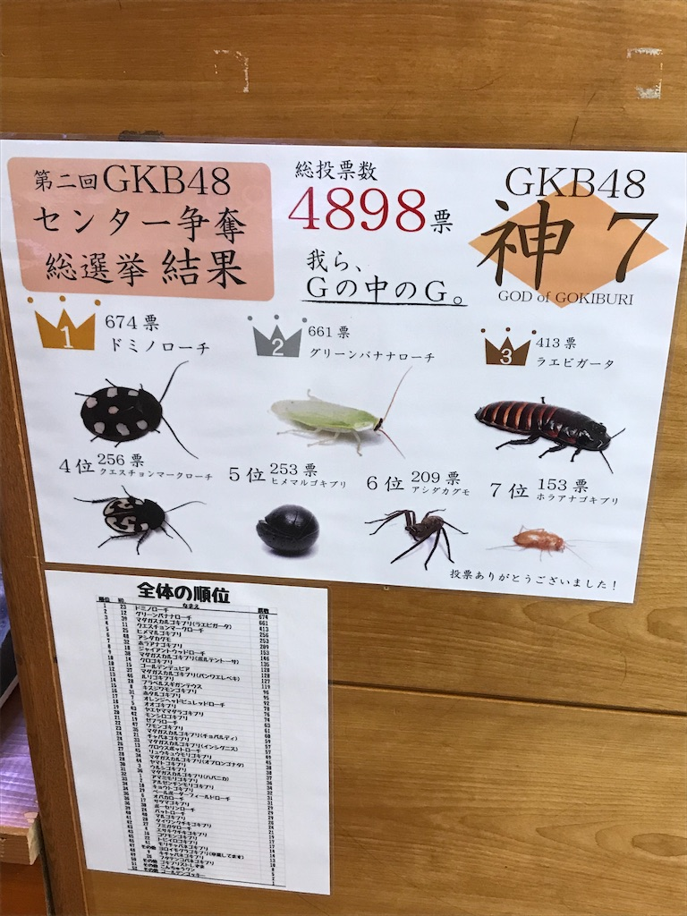 f:id:shimauma2692:20200112185808j:image