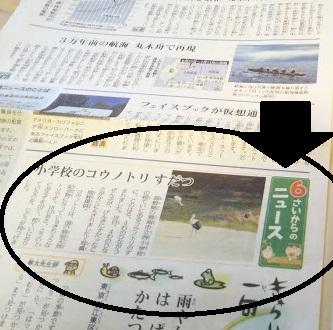 f:id:shimausj:20190804060453j:plain