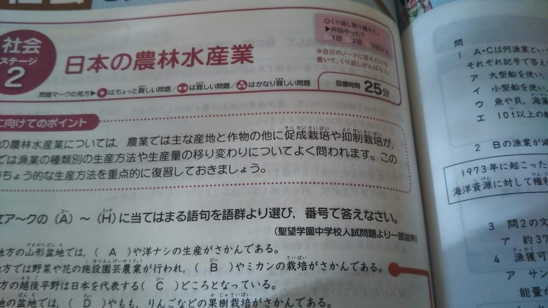 f:id:shimausj:20200114131156j:plain