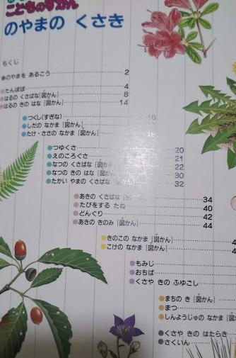 f:id:shimausj:20200127122345j:plain