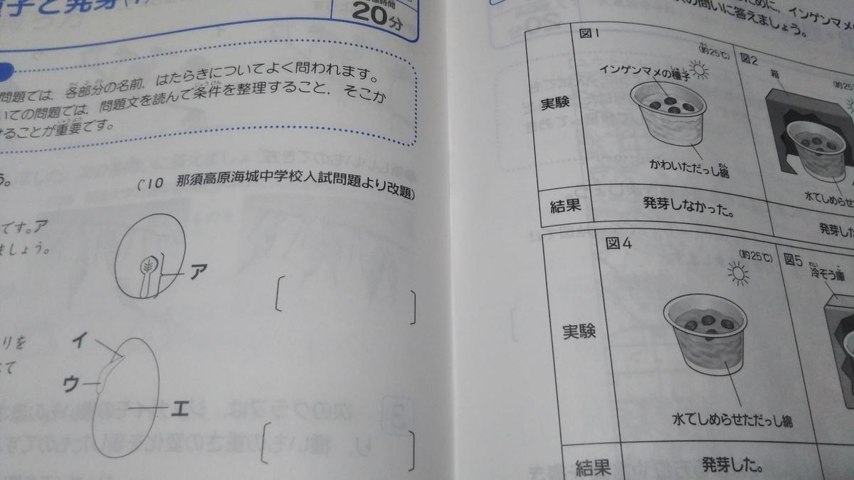f:id:shimausj:20200414185319j:plain