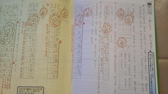 f:id:shimausj:20210209125743j:plain
