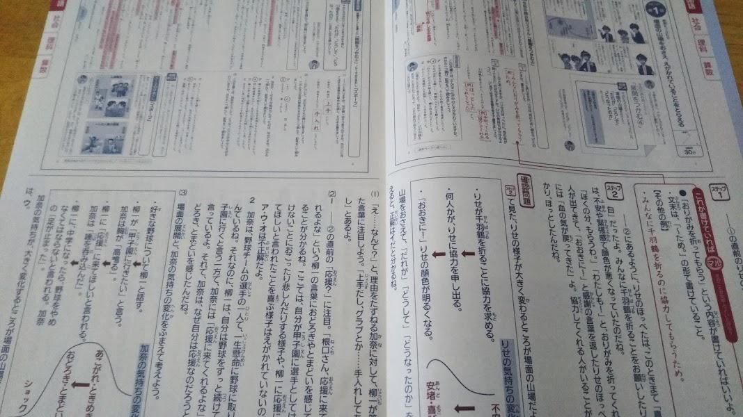 f:id:shimausj:20210216133036j:plain