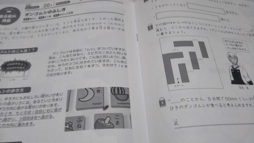 f:id:shimausj:20210219095103j:plain