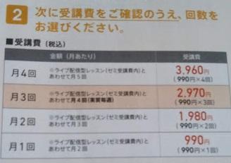 f:id:shimausj:20210227120355j:plain