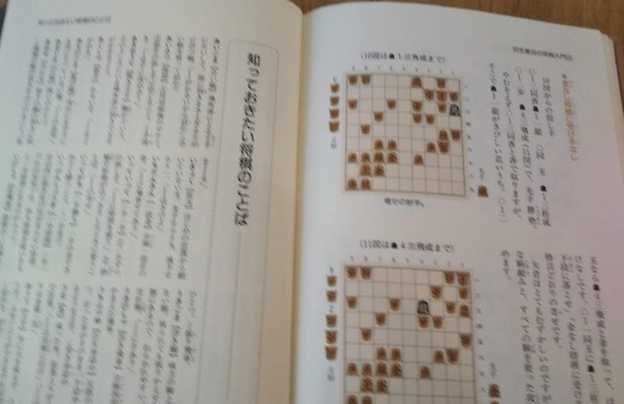 f:id:shimausj:20210309174813j:plain