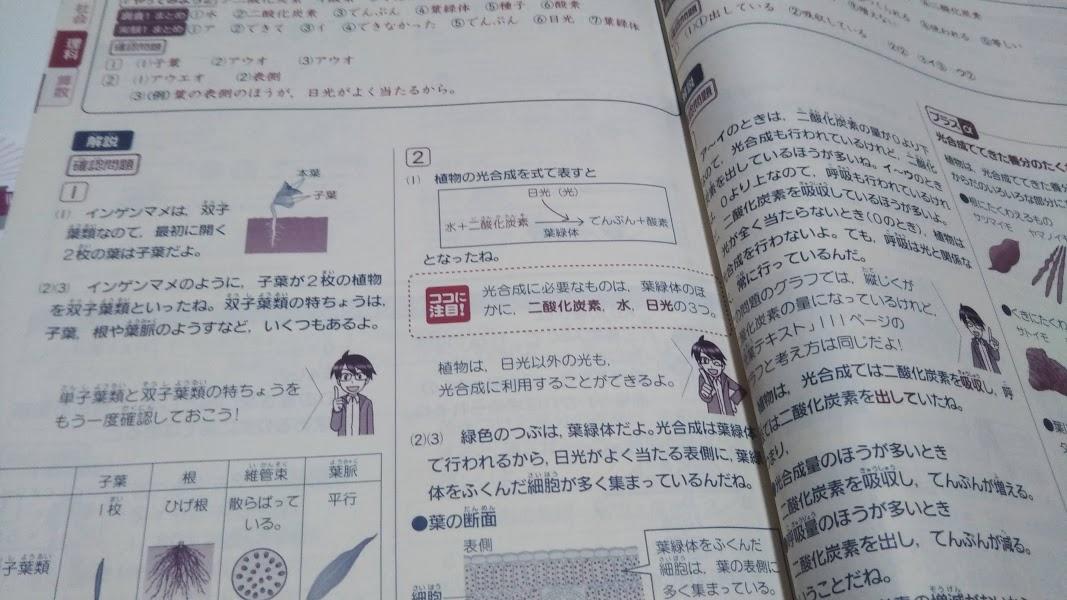f:id:shimausj:20210404083532j:plain