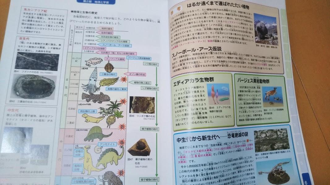 f:id:shimausj:20210420124438j:plain