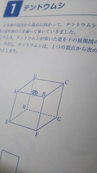 f:id:shimausj:20210428222211j:plain