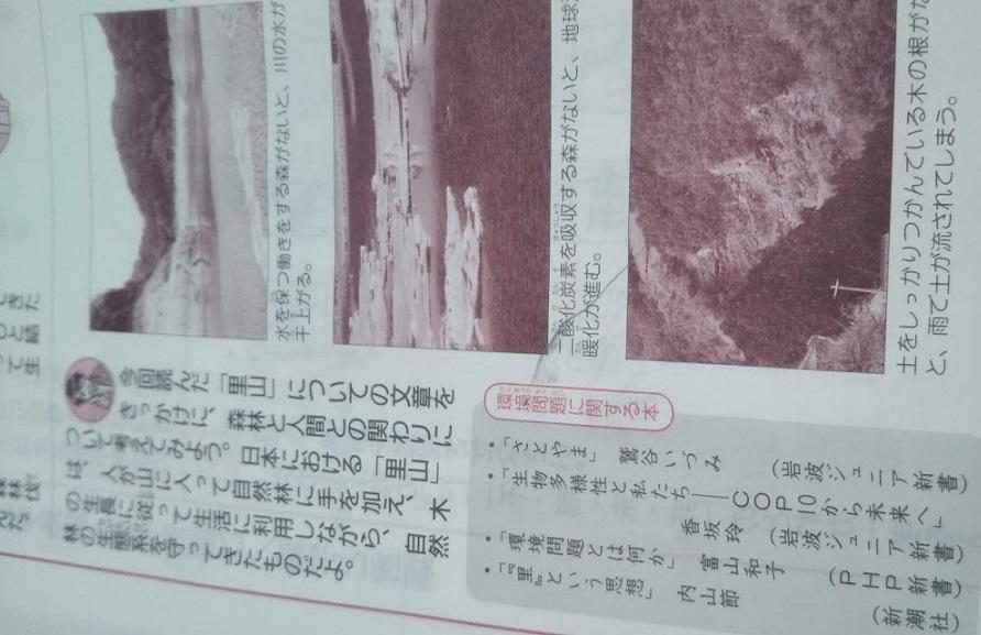 f:id:shimausj:20210528160713j:plain