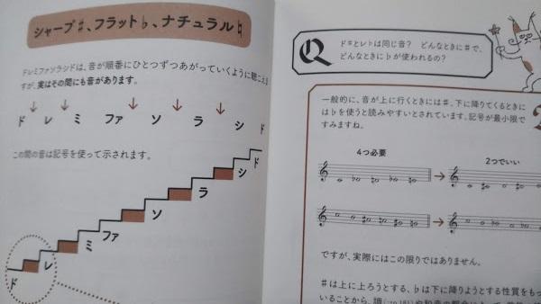 f:id:shimausj:20210609090809j:plain