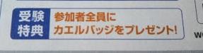 f:id:shimausj:20210617114128j:plain