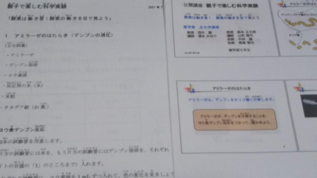 f:id:shimausj:20210910142100j:plain