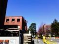 京都大学医学図書館で小笠原登の資料に出会いました。 - shimautaki's ...