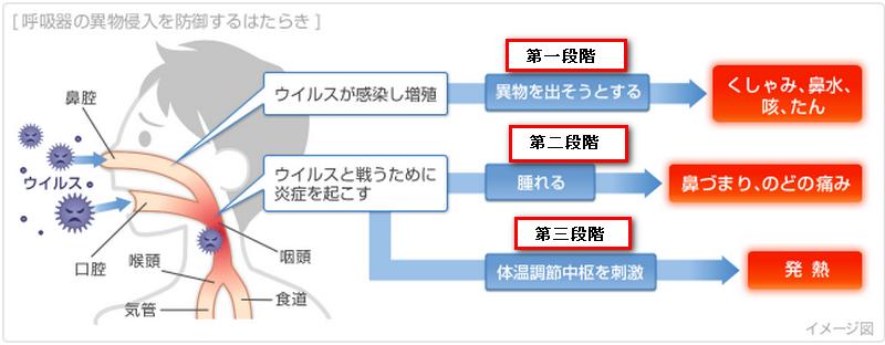 f:id:shimazo3:20190417101149p:plain