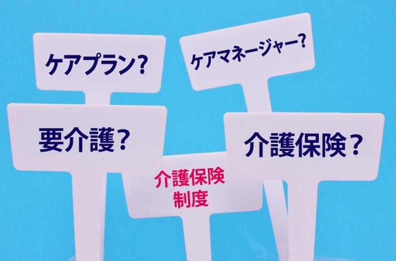 f:id:shimazo3:20191119031742p:plain