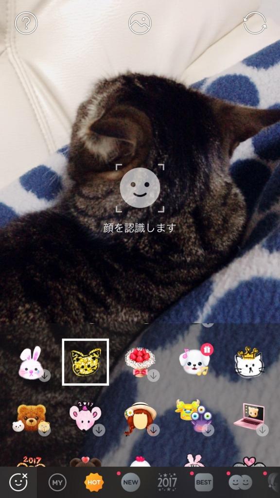 f:id:shimazour:20170112004817j:plain
