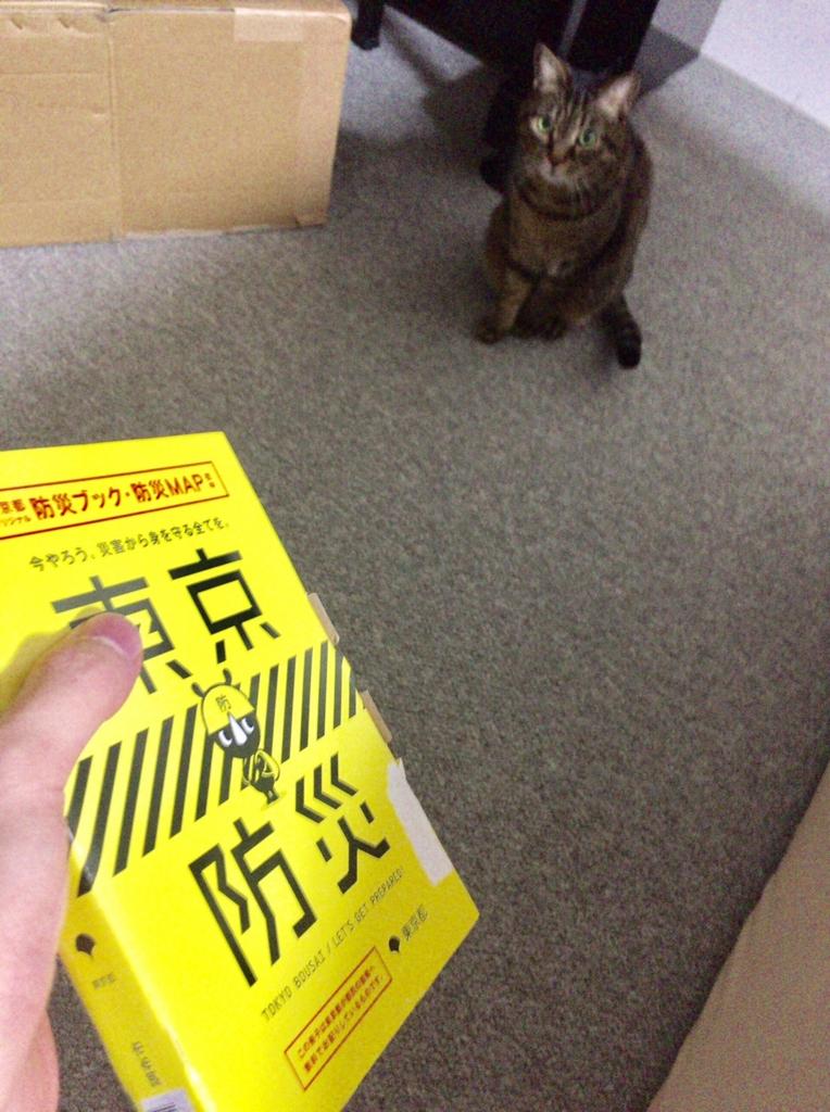 f:id:shimazour:20170112005302j:plain