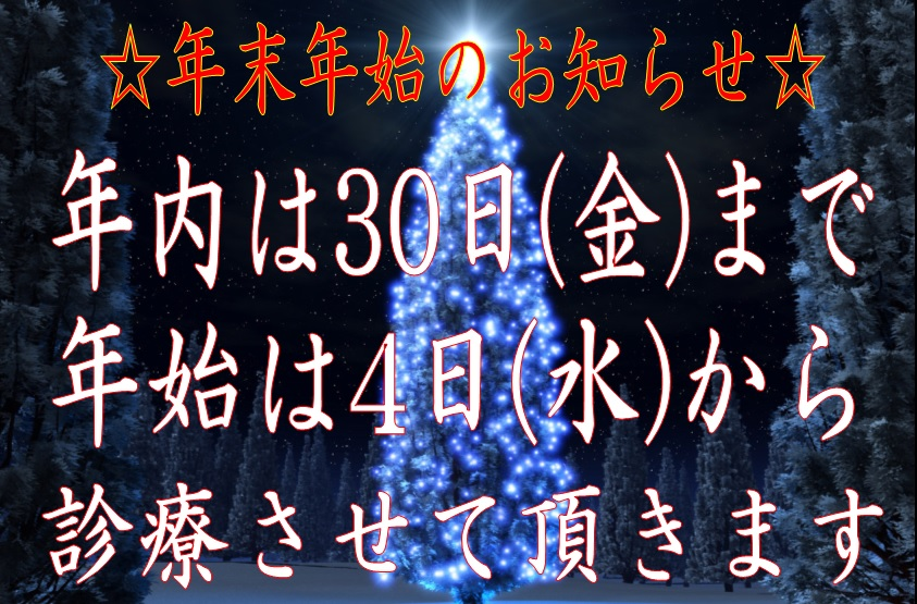 f:id:shimbashiekimae:20161207120641j:plain