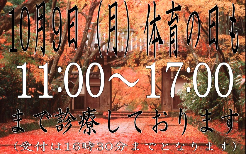 f:id:shimbashiekimae:20171006203754j:plain