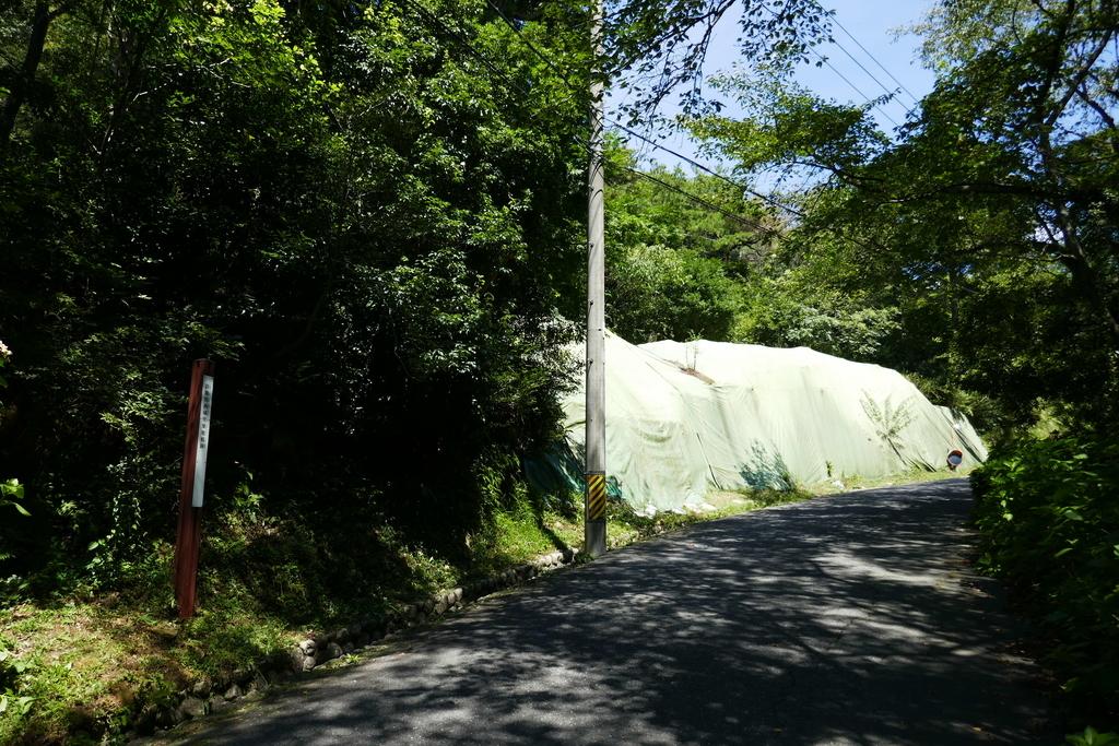 鈴鹿関西城跡築地痕跡