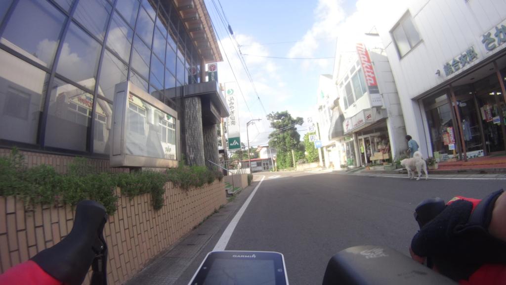 f:id:shimesaba4031:20170204151422j:plain