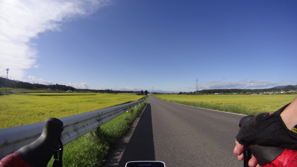 f:id:shimesaba4031:20170924184747j:plain