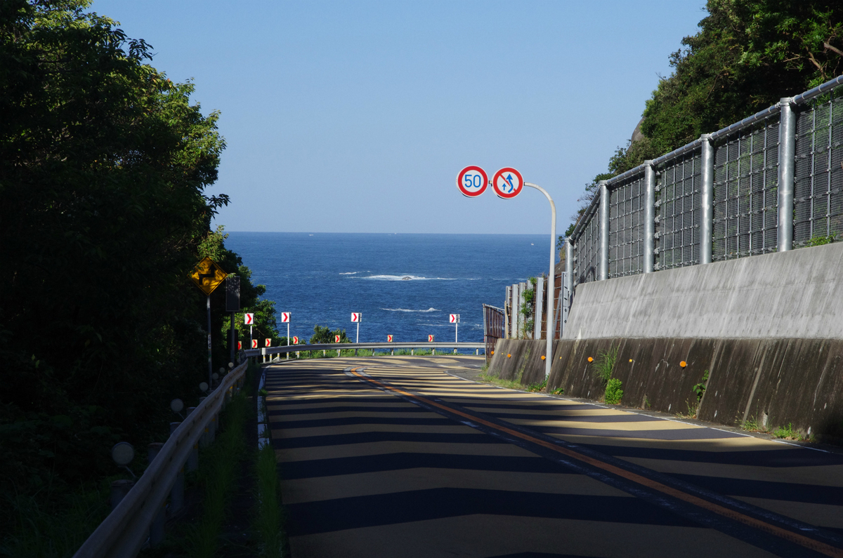 f:id:shimesaba4031:20200201211740j:plain