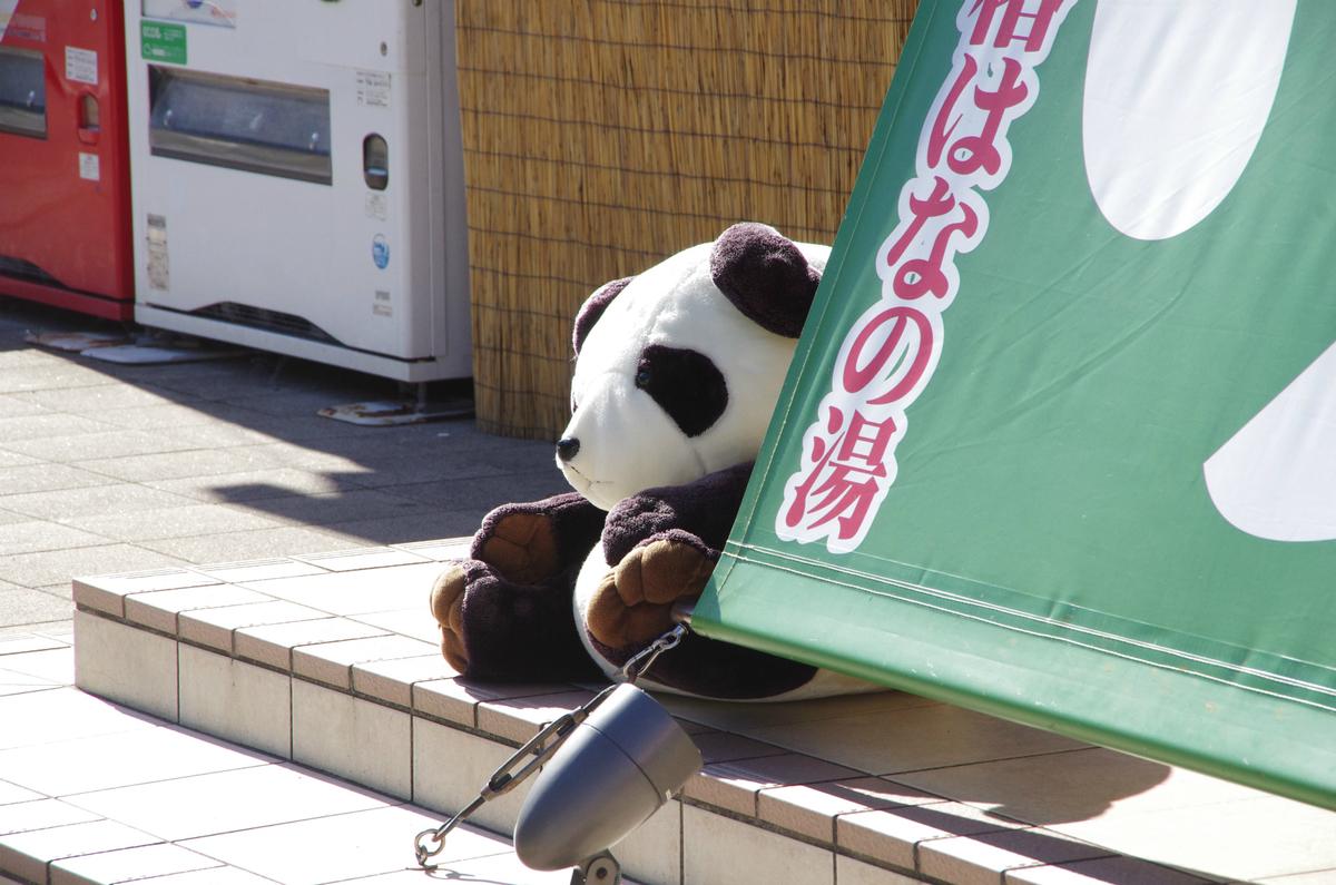 f:id:shimesaba4031:20200201211805j:plain