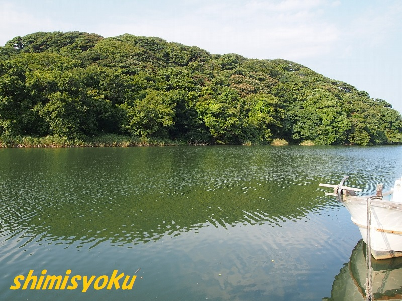 f:id:shimisyoku:20200829140443j:plain