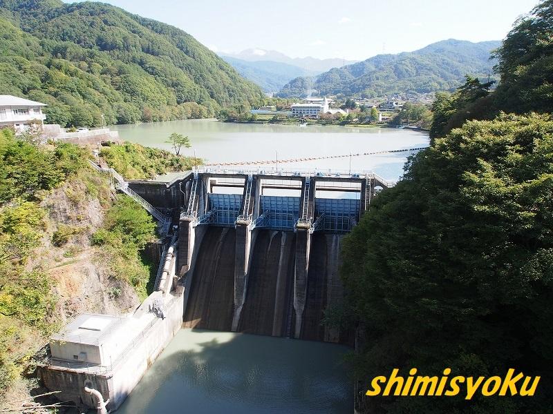 f:id:shimisyoku:20201016175837j:plain