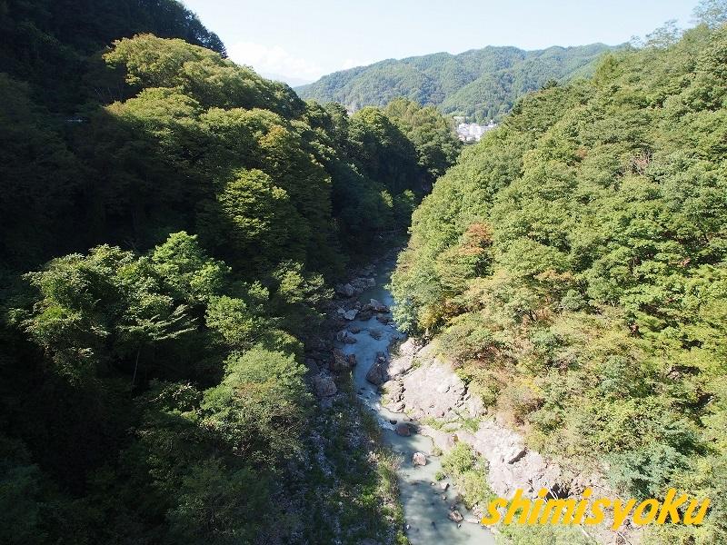 f:id:shimisyoku:20201016180022j:plain