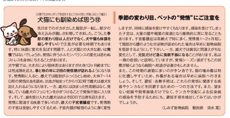 f:id:shimizu-camc:20201225103837p:plain