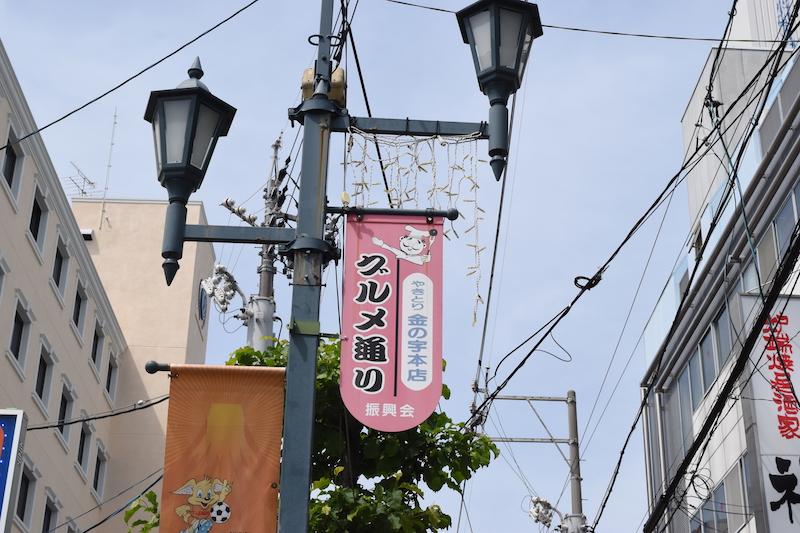 f:id:shimizu-minato:20180529154733j:plain