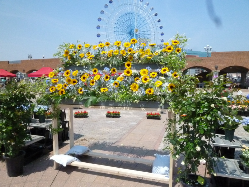 f:id:shimizu-minato:20190507171623j:plain