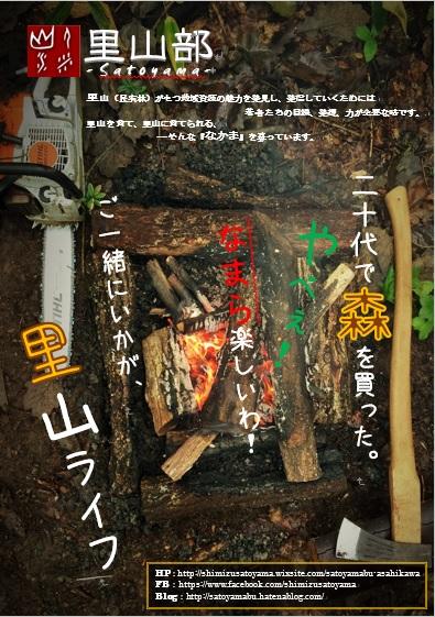 f:id:shimizu-satoyama:20161104000916j:plain