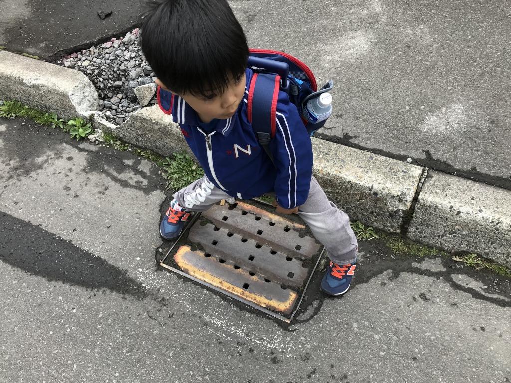 f:id:shimizu-satoyama:20180501164321j:plain