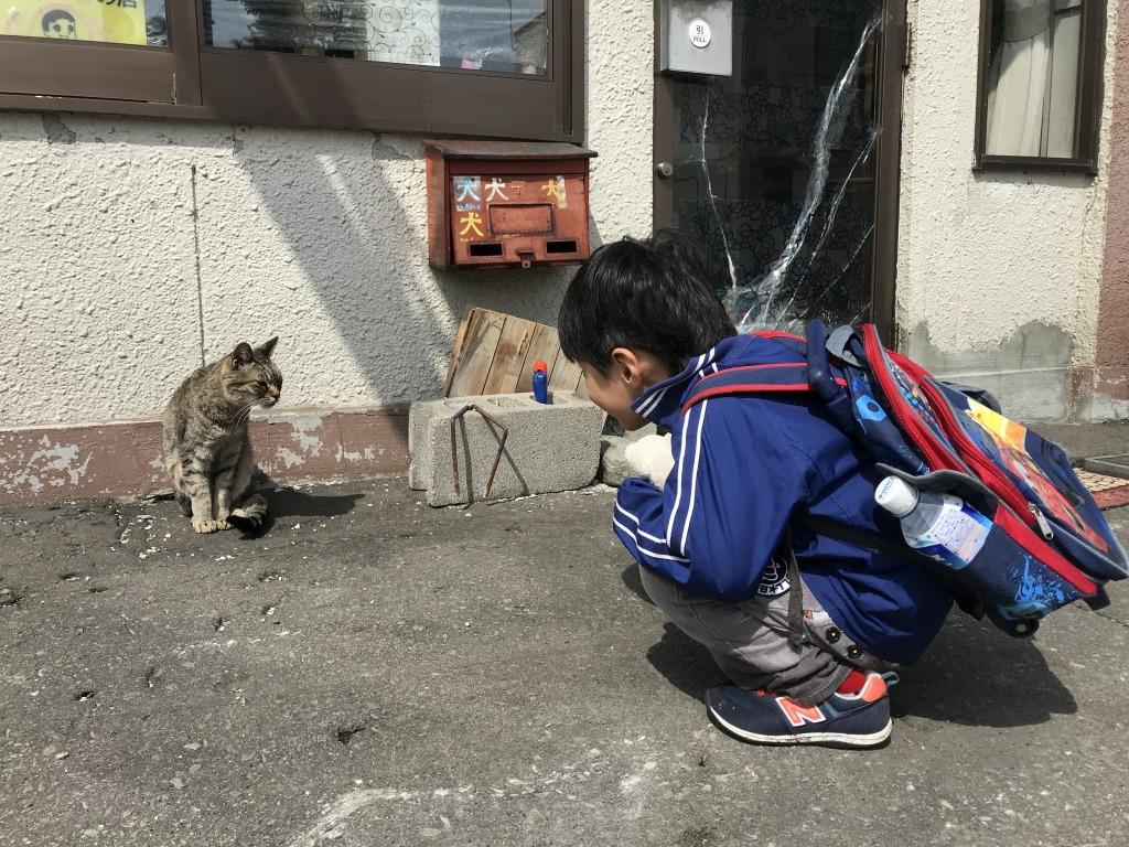 f:id:shimizu-satoyama:20180501170039j:plain