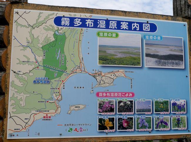 f:id:shimizu-satoyama:20190213102248j:plain